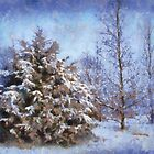 Winter Blues by Linda Miller Gesualdo