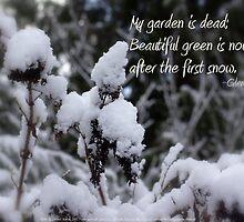 my garden is dead, snow by PoemsProseArt