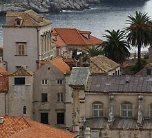 Dubrovnik from the wall by BronReid
