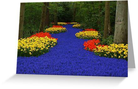 Flower path by Lindie