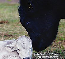Mother's Day Card With Spring Cow And Calf - Special Mother  by Moonlake