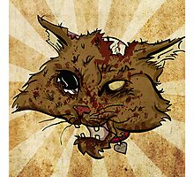 Zombie Cat Photographic Print