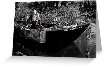 The Lady of Shalott by Samantha Higgs