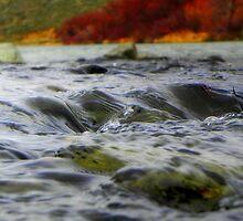 Yakima River by Valfreyja