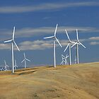 Walla Walla Windmills II by AdventureGuy