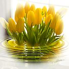 Yellow Tulip Bliss by Trudy Wilkerson
