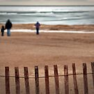 Beaches In Winter by Terry Doyle