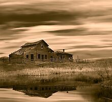 Black Sage (sepia) by John Poon