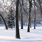 Winter Day by Barberelli