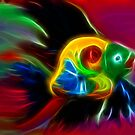Rainbow Fish by suzannem73