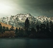 Dark Trees - New Zealand Landscape by Cubagallery