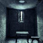 The House Of A Locked Mind by Evelina Kremsdorf