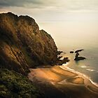 Piha Coast - New Zealand Landscape by Cubagallery