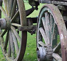Wagon Wheels - Willowbank, New Zealand by BreeDanielle