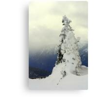 """A Blast of Winter"" Canvas Print"