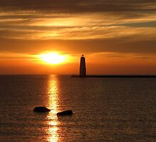 Amber And Lake Michigan by Lynne Bryan Photography