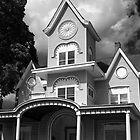 Decorative house by Sandy Taylor