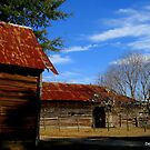 Madison County Tobacco Barn by Debbie Robbins