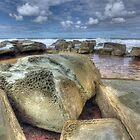 Honeycomb by the sea by Chris Allen