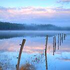 Palsko Lake, Pivka lakes, Slovenia by Ian Middleton
