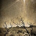 Under An Unforgiving Sun by Christine Annas