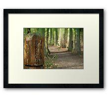 A Walk on the Beech! Framed Print