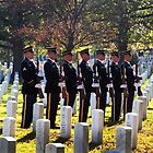 Honor Guard by ©  Paul W. Faust