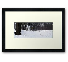 Long Sault # 4 Steep Hill Framed Print