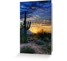 Sonoran Sunrise  Greeting Card