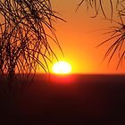 Sun Rise At The Bluff, Yowah, SW Queensland Australia by Liza Barlow
