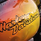 Harley Davidson by AndrewBerry