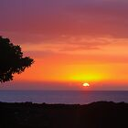 Kona Sunset by Yukondick