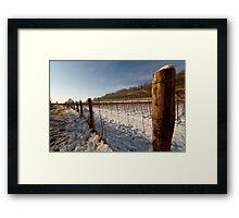 Snow on vineyard Framed Print