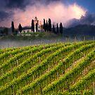 Vineyard hill by jordygraph