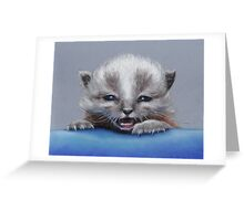 Wee Orphan Greeting Card