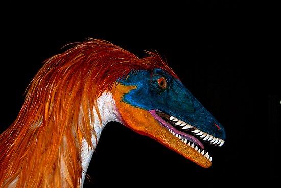 Utah Raptor by Rodney55