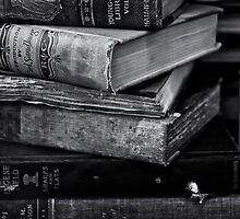 Old Books by Jeffrey  Sinnock