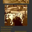 Under Coffee Table 2 Horse Stable by Edibl3leper
