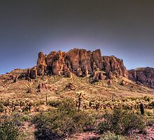 Spring in the Superstitions  by Saija  Lehtonen