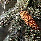 Cone of Ice - Upstate New York by Zachary Lynch