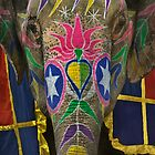 Elephantasy by Glen Allison