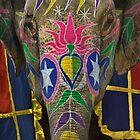 Elephantasy by Glen Allison