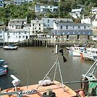 Fishing Village in Cornwall by puddingpiesjb