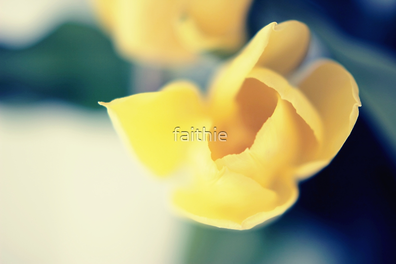 delicious moments of spring by faithie