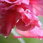 Happy Mother's Day (card) by aussiebushstick