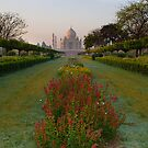 Taj Mahal-2/2011... by Mukesh Srivastava