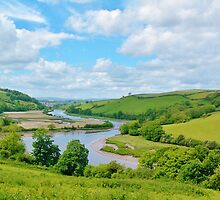 Totnes in the Distance by Janice Petitjean