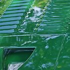 F-Type Jaguar Hood Detail by TeaCee