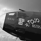 The Tojo Busters by Bairdzpics