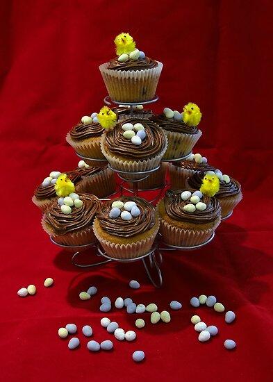 Chocolate Chip Cupcakes by AnnDixon
